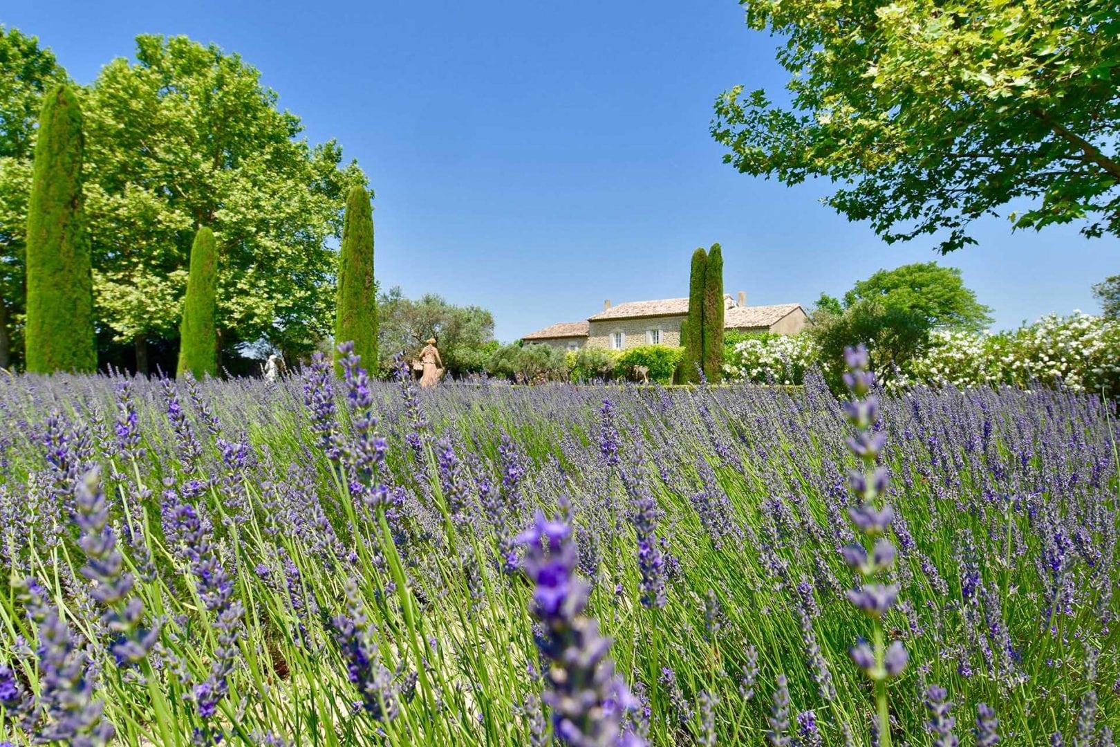 Maison de Lavande, Coustellet, Luberon Valley